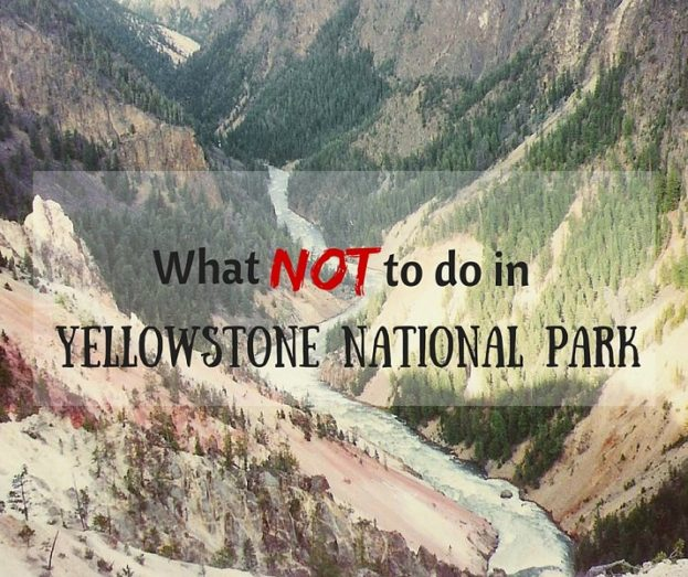What not to do in Yellowstone National Park
