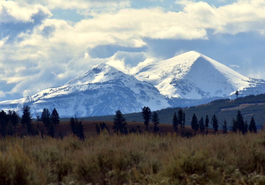 Private guided tour of Yellowstone National Park with Yellowstone Insight