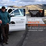Private guided tour of Yellowstone with Yellowstone Insight