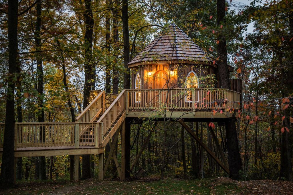 The Nest Treehouse | The Mohicans
